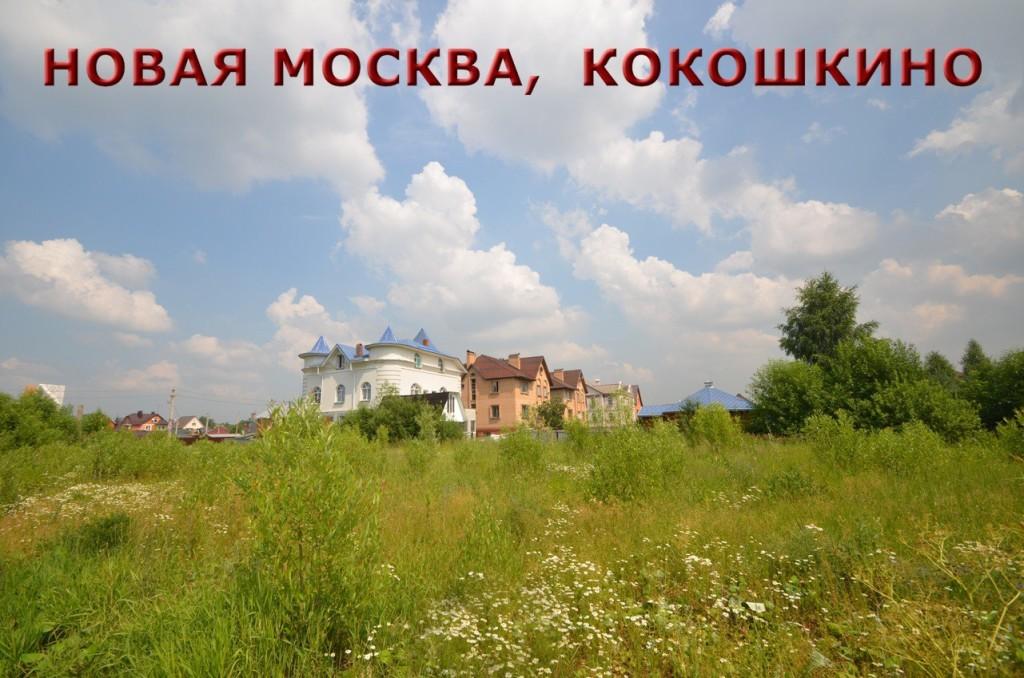 Новая Москва. пгт. Кокошкино